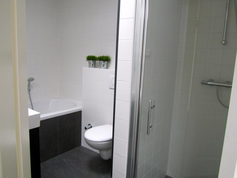 Badkamer en toilet renovaties, erkend installateur / loodgieter ...